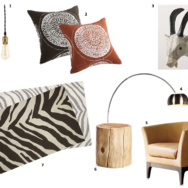 Style Guide: South African Inspired Lighting & Decor