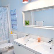 Professional's Corner | Barn Wall Sconces Add Splash of Color to Boys' Bathroom