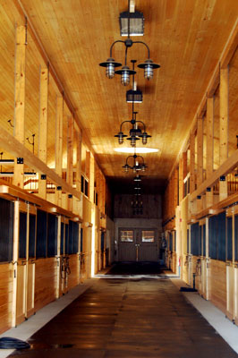 Rustic chandeliers add bit of elegance to ny horse barn blog the same cast guard and glass look can be had in a two light industrial chandelier called the partnership this 23 wide fixture can provide plenty of light mozeypictures Gallery
