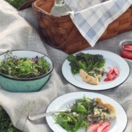 Featured Customer | Porcelain Enamel Dinnerware for a Stylish Central Park Picnic
