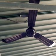 Featured Customer | Ceiling Fans Keep Things Cool for Baseball Faithful
