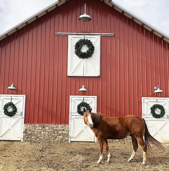 gooseneck barn lights